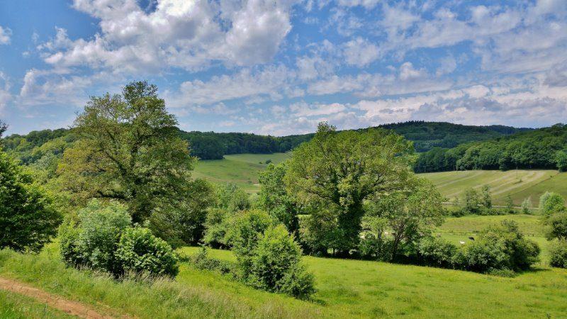 Haute Saône, 50 tinten groen